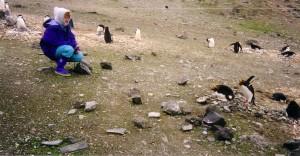 antarctica_pinguini