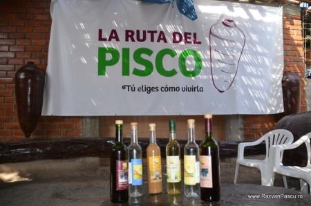 Peru - Ica, Huacachina 4