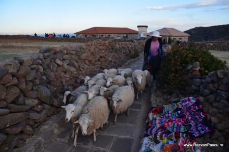 Peru Amantani island 10
