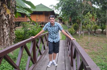 Peru, Amazon jungle 13