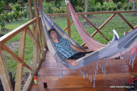 Peru, Amazon jungle 19