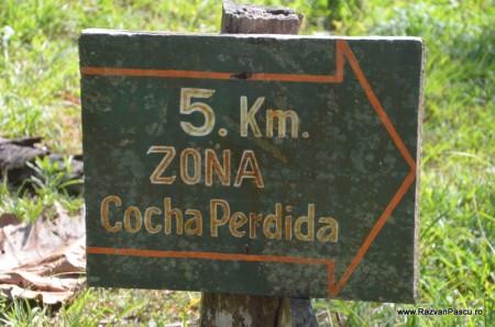 Peru, Amazon jungle 31