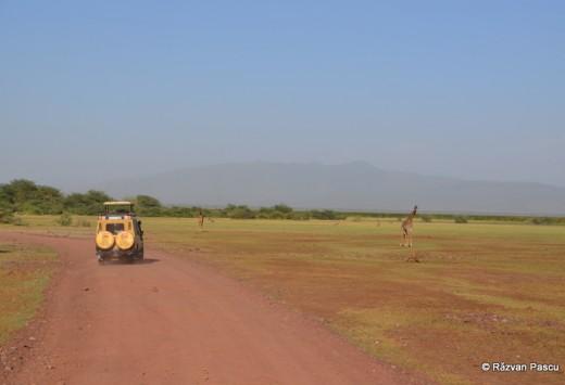 Tanzania 20