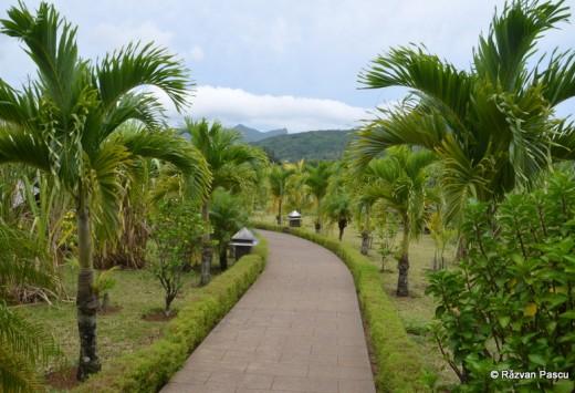 Mauritius fotografie 26