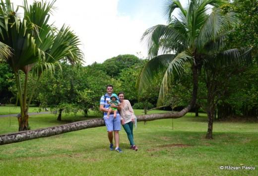 Mauritius fotografie 38