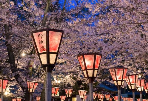 Lantern in Sakura Festival at Mishima Shrine, Shizuoka, Japan. The lantern reads The light of God