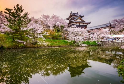 Nara, Japan at Koriyama Castle in the spring season