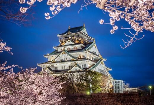 Osaka castle among cherry blossom (sakura) in the evening scene after sunset