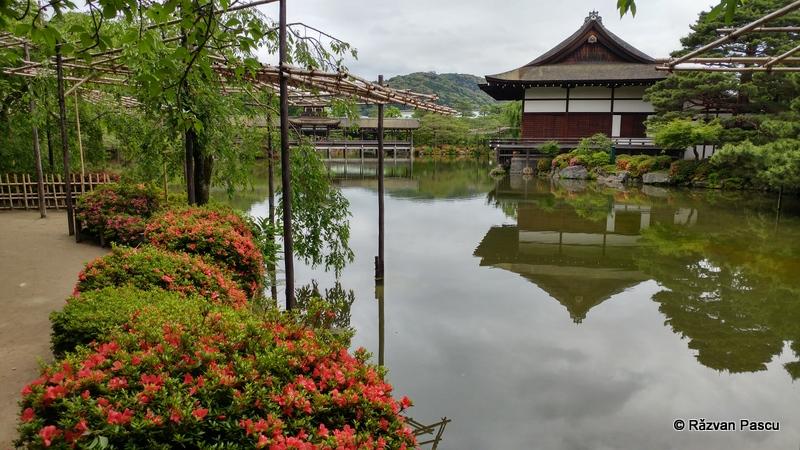 Japonia cu LG g5 12