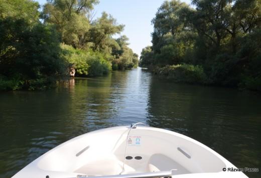 Delta Dunarii, Uzlina, Cormoran 21